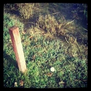 golf estaca obstaculo de agua